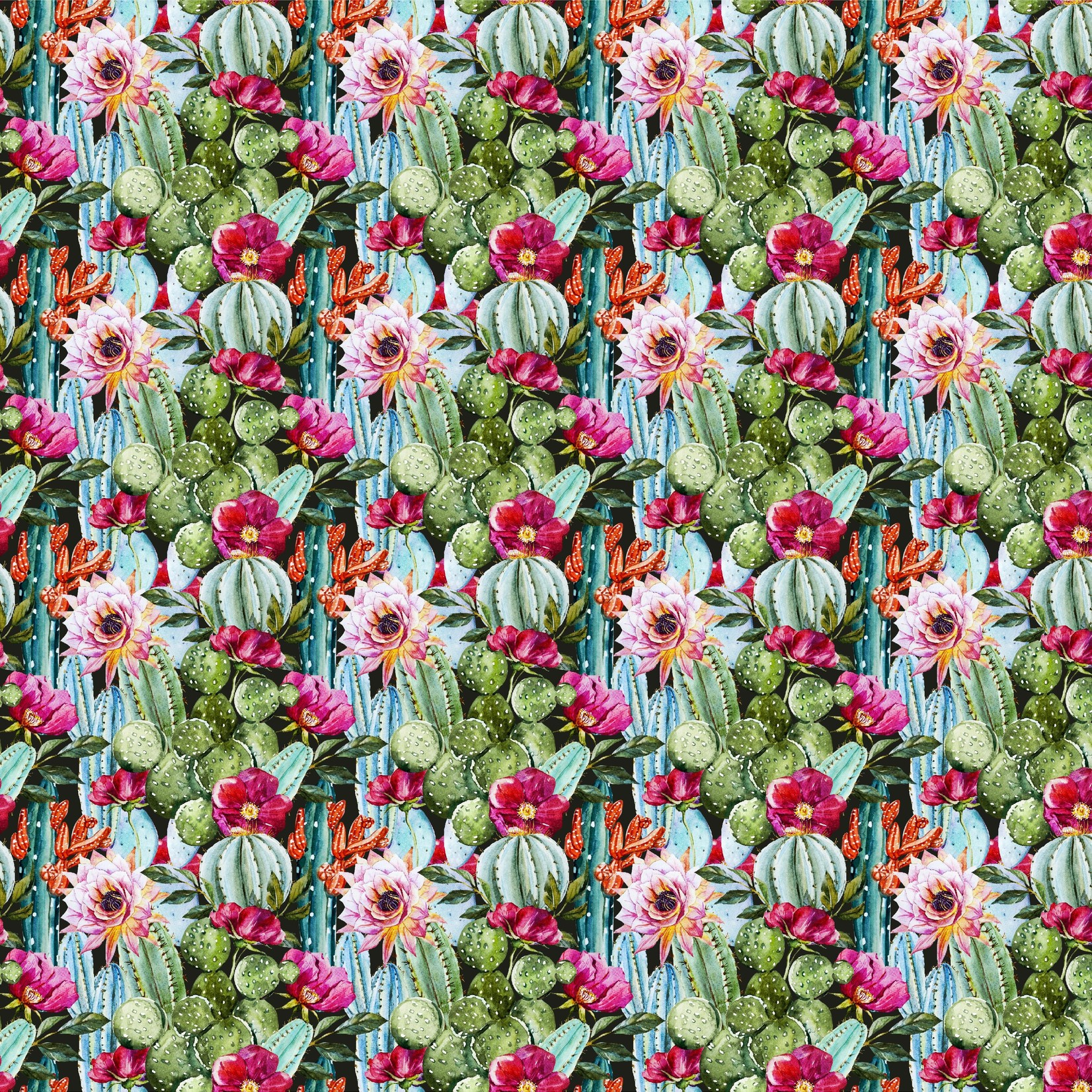 TVD Cactus Flowers