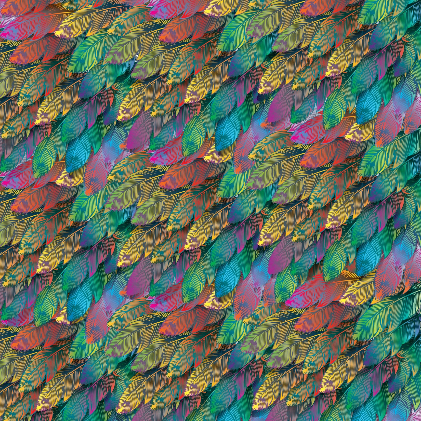 TVD Rainbow Feathers