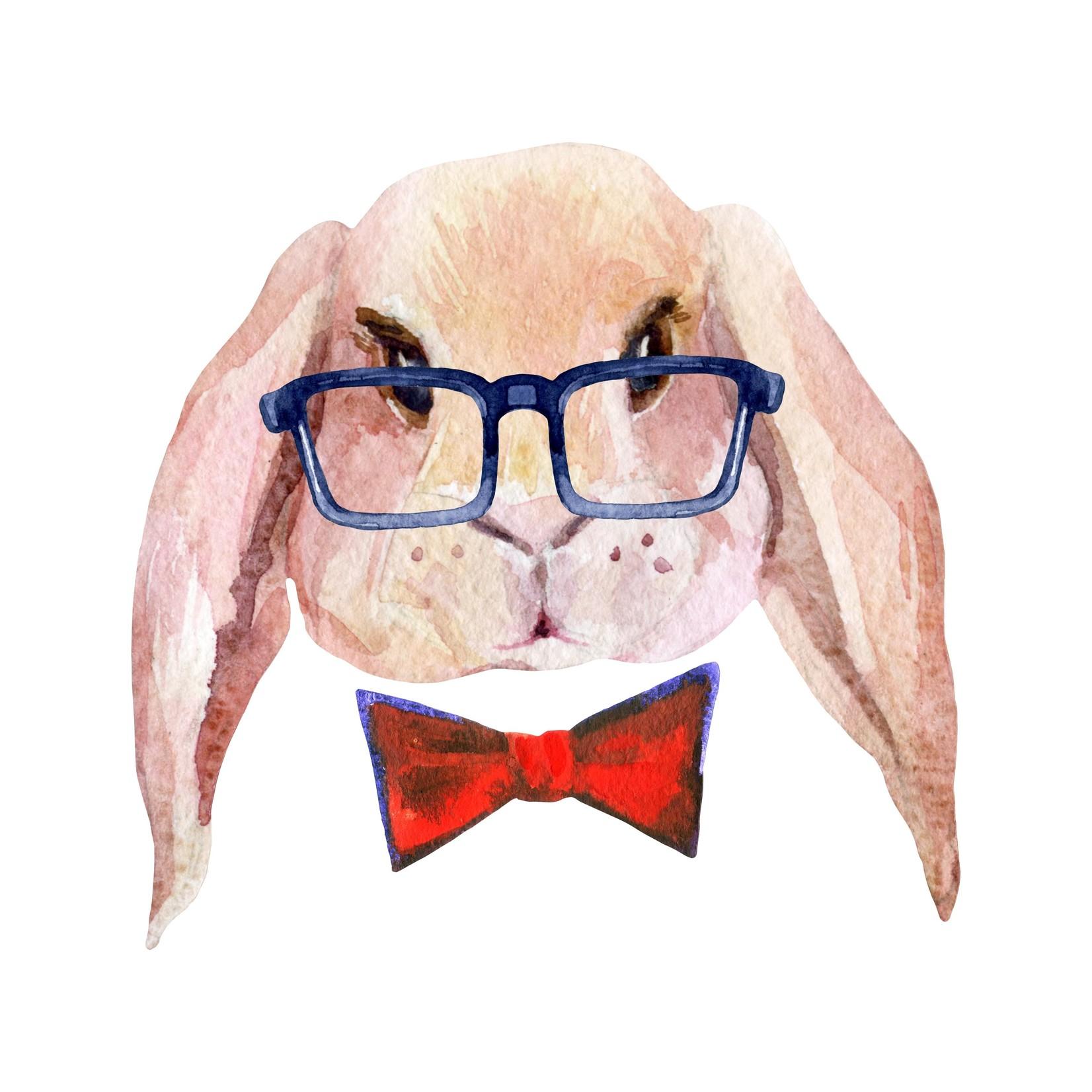 Bunny Boy Transfer