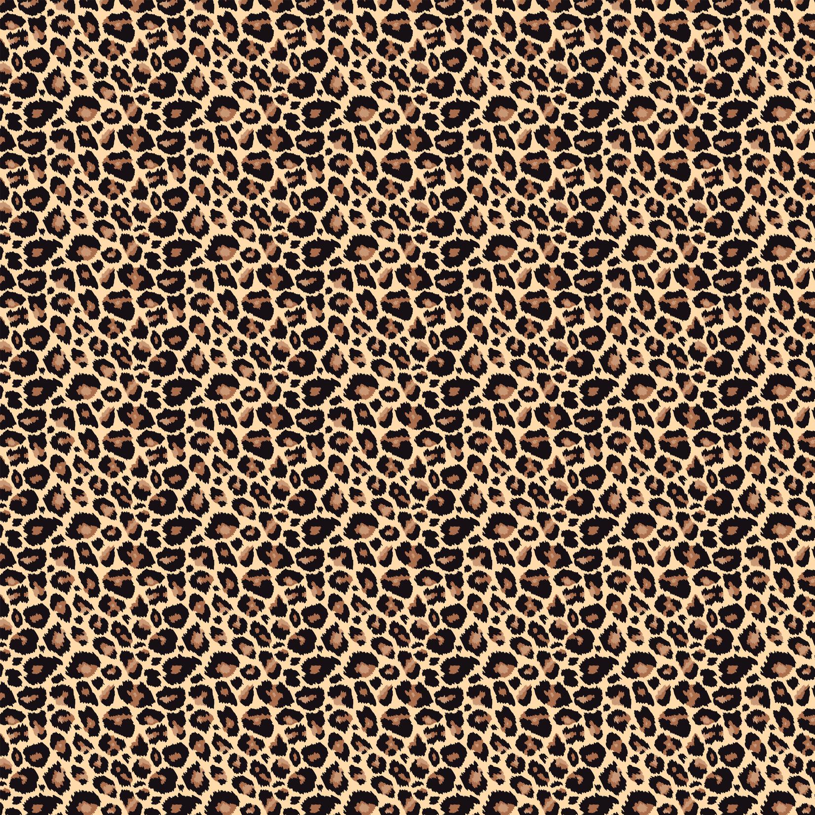 TVD Modern Leopard