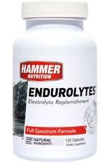 Hammer Nutrition Hammer Endurolytes: Bottle of 120 Capsules