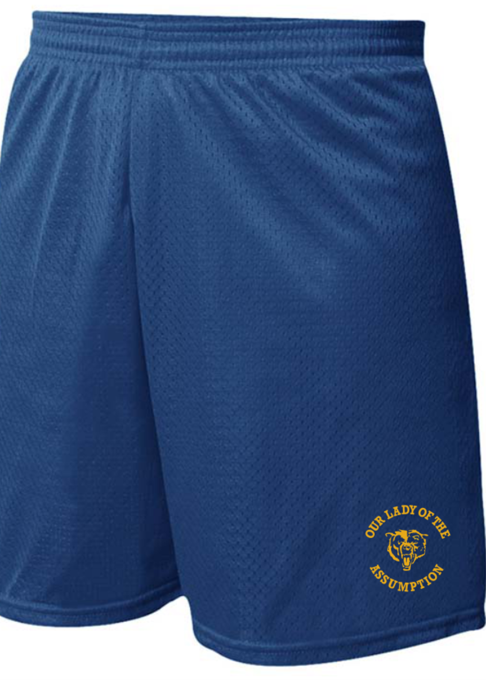 OLA Navy Mini Mesh PE Shorts