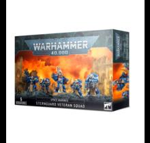Warhammer 40k Space Marines Sternguard Veteran Squad