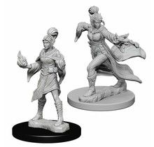 Pathfinder Deep Cuts Elf Female Sorcerer