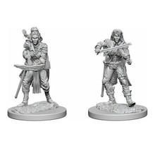 Pathfinder Deep Cuts Elf Female Bard