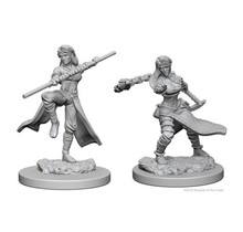 Dungeons and Dragons Nolzur's Marvelous Minis Female Human Monk