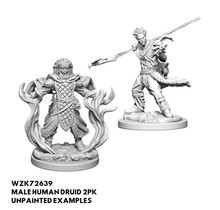 Dungeons and Dragons Nolzur's Marvelous Minis Human Male Druid