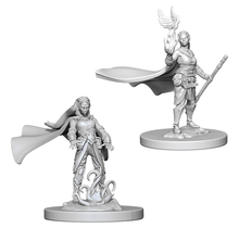 Dungeons and Dragons Nolzur's Marvelous Minis Elf Female Druid