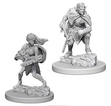 Dungeons and Dragons Nolzur's Marvelous Minis Drow