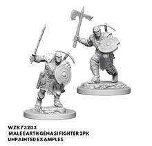 Dungeons and Dragons Nolzur's Marvelous Minis Earth Genasi Male Fighter