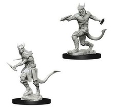 Dungeons and Dragons Nolzur's Marvelous Minis Tiefling Male Rogue