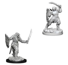 Dungeons and Dragons Nolzur's Marvelous Minis Dragonborn Paladin