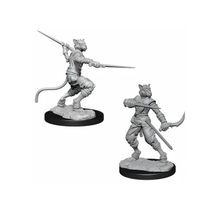 Dungeons and Dragons Nolzur's Marvelous Minis Tabaxi Rogue