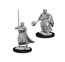 Dungeons and Dragons Nolzur's Marvelous Minis Human Cleric (2) Male