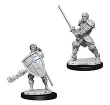Dungeons and Dragons Nolzur's Marvelous Minis Human Fighter (2) Male