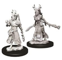 Dungeons and Dragons Nolzur's Marvelous Minis Female Human Druid
