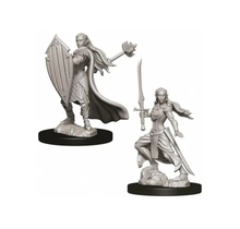 Dungeons and Dragons Nolzur's Marvelous Minis Female Elf Paladin