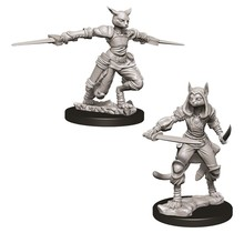 Dungeons and Dragons Nolzur's Marvelous Minis Female Tabaxi Rogue