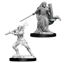 Dungeons and Dragons Nolzur's Marvelous Minis Female Human Paladin
