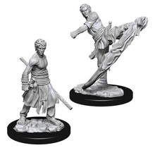 Dungeons and Dragons Nolzur's Marvelous Minis Male Half-Elf Monk