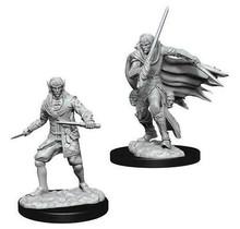 Pathfinder Deep Cuts Male Elf Rogue