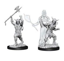 Dungeons and Dragons Nolzur's Marvelous Minis Male Human Barbarian