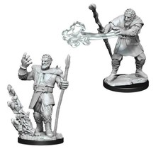 Dungeons and Dragons Nolzur's Marvelous Minis Male Firbolg Druid