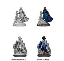 Dungeons and Dragons Nolzur's Marvelous Minis Female Tiefling Sorceror