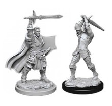 Dungeons and Dragons Nolzur's Marvelous Minis Male Human Paladin