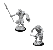 Dungeons and Dragons Nolzur's Marvelous Minis Gnoll and Gnoll Flesh Gnawer