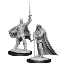 Dungeons and Dragons Nolzur's Marvelous Minis Human Paladin Male