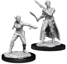 Dungeons and Dragons Nolzur's Marvelous Minis Shifter Rogue Female