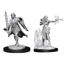 Dungeons and Dragons Nolzur's Marvelous Minis Multiclass Warlock Sorceror Female