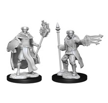 Dungeons and Dragons Nolzur's Marvelous Minis Multiclass Cleric Wizard Male