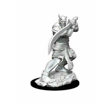 Dungeons and Dragons Nolzur's Marvelous Minis Efreeti