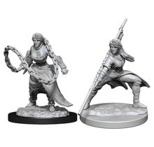 Dungeons and Dragons Nolzur's Marvelous Minis Human Monk Female
