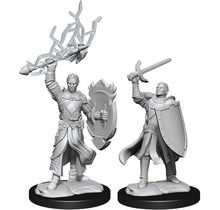 Dungeons and Dragons Nolzur's Marvelous Minis Half-Elf Paladin Male