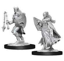 Dungeons and Dragons Nolzur's Marvelous Minis Kalashtar Cleric Female