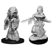 Dungeons and Dragons Nolzur's Marvelous Minis Night Hag & Dusk Hag