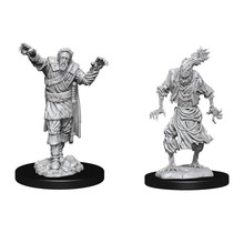 Dungeons and Dragons Nolzur's Marvelous Minis Scarecrow & Stone Cursed