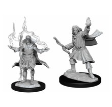 Pathfinder Deep Cuts Elf Sorcerer Male