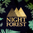 Heart of the Deernicorn Night Forest