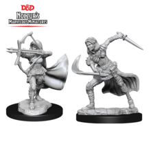 Dungeons and Dragons Nolzur's Marvelous Minis Air Genasi Female