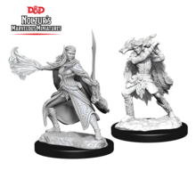 Dungeons and Dragons Nolzur's Marvelous Minis Winter Eladrin and Spring Eladrin