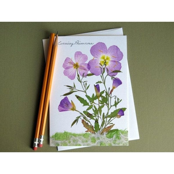 Austin & Texas Evening Primrose Card