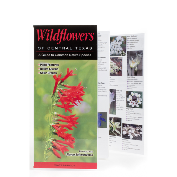 Lady Bird Johnson Wildflowers of Central Texas Guide PB