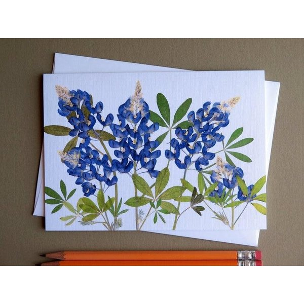 Austin & Texas Bluebonnets Card horiz