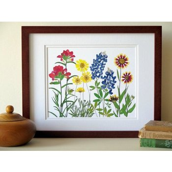 Austin & Texas Texas Wildflowers 11X14 horiz