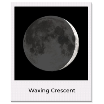 Sale CA 1st Qtr Waxing Moon Necklace