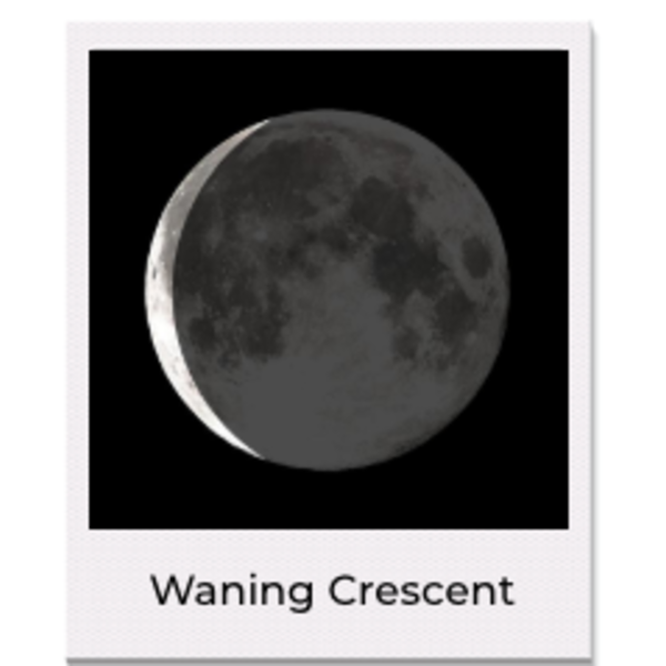 sale CD 4th Qtr Waxing Moon Necklace